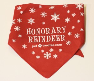 Handkerchief from December Pet Treater Box - The Homespun Chics