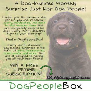 DogPeopleBox Promo pic