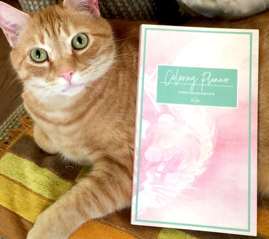 Stress relieving cats coloring - Wouldn T You Love To Win A Stress Relieving Cats Coloring Planner For Yourself Beautiful Kitty Not Included Thank You Blue Star Coloring